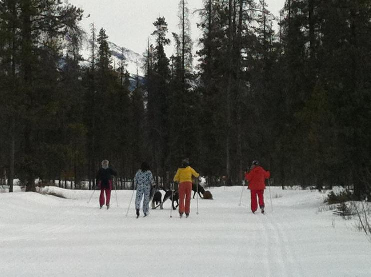 Pooch'n'ski, Jasper