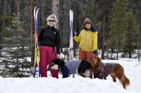 Ski Chix and Pooches